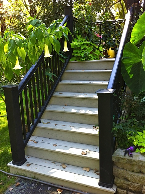 Opinions from you Decking pro's-img_2518.jpg