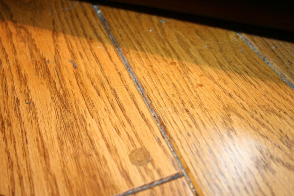 Beveled Hardwood Floor Refinishing - Flooring - Contractor Talk