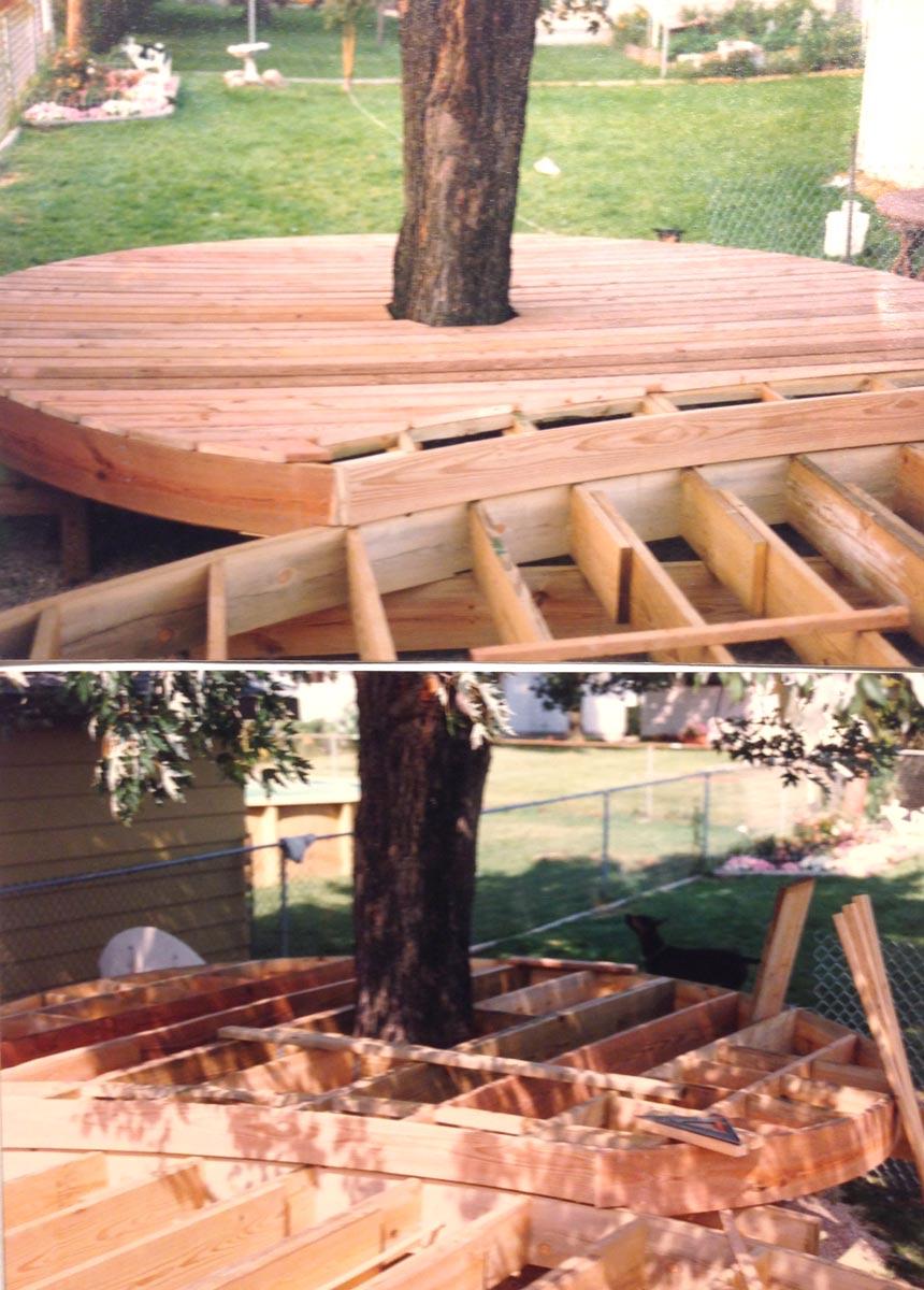 Deck around tree?-img_2880-1-.jpg