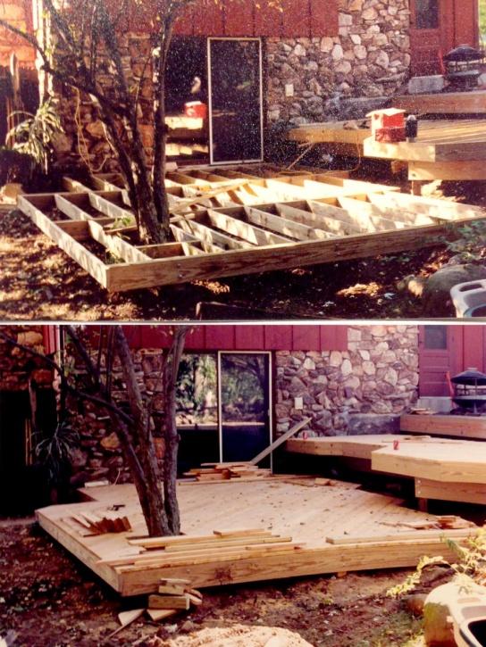 Deck around tree?-img_2881-1-.jpg