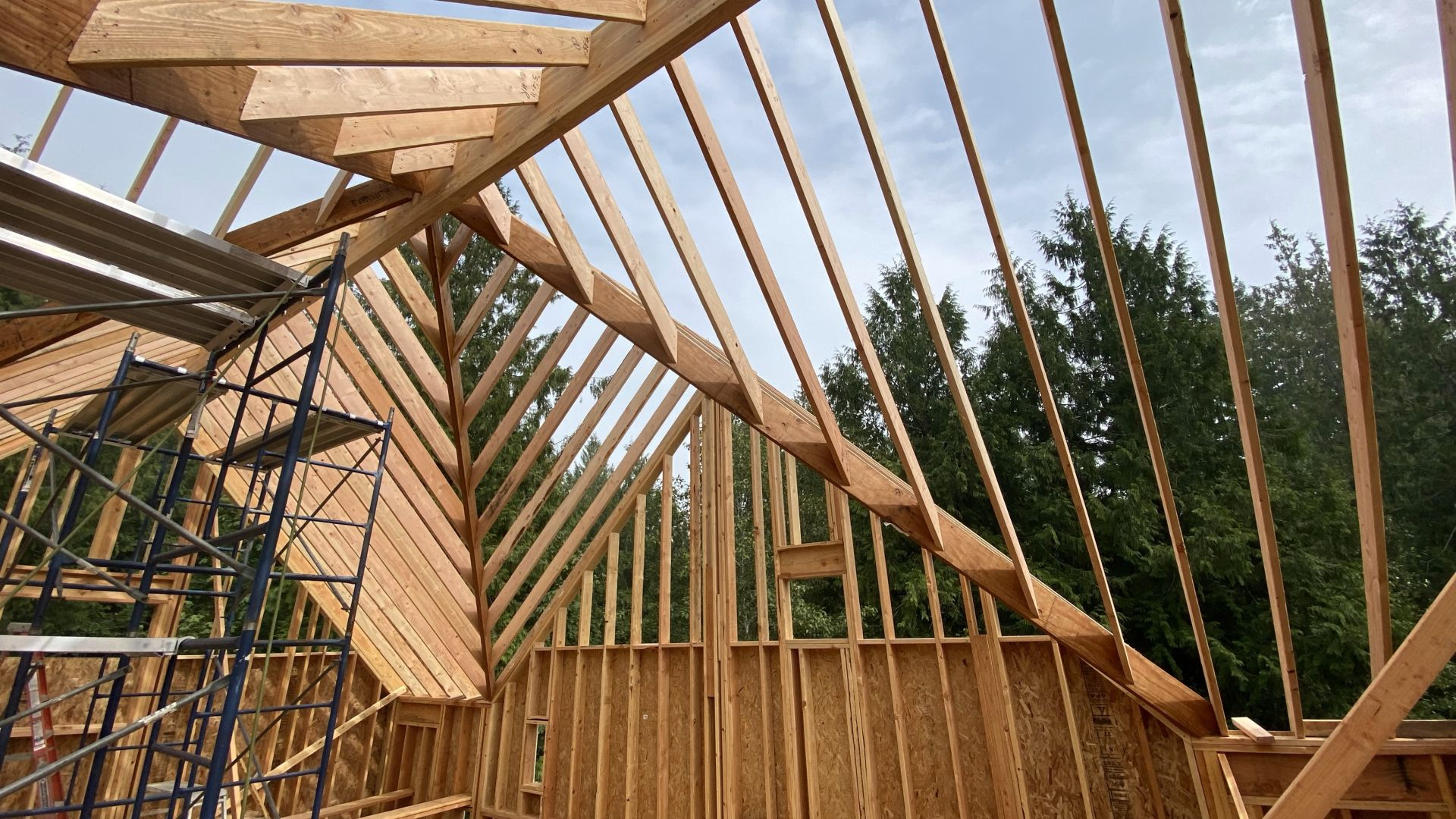 Hand cutting a roof after a 10 year break-img_3785.jpg