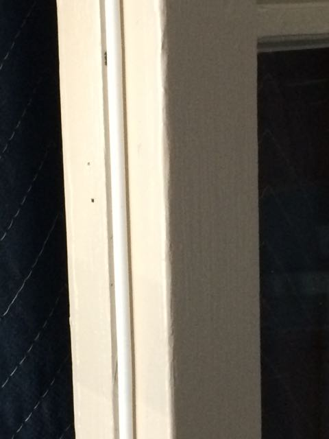 Building wood screen doors-img_3975-1-.jpg