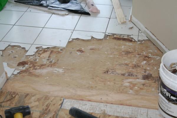 Removing Porcelain Tile On Stapled And Glued Subfloor Img 5104 Jpg