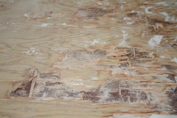 Removing Porcelain Tile on Stapled and Glued Subfloor-img_5105.jpg