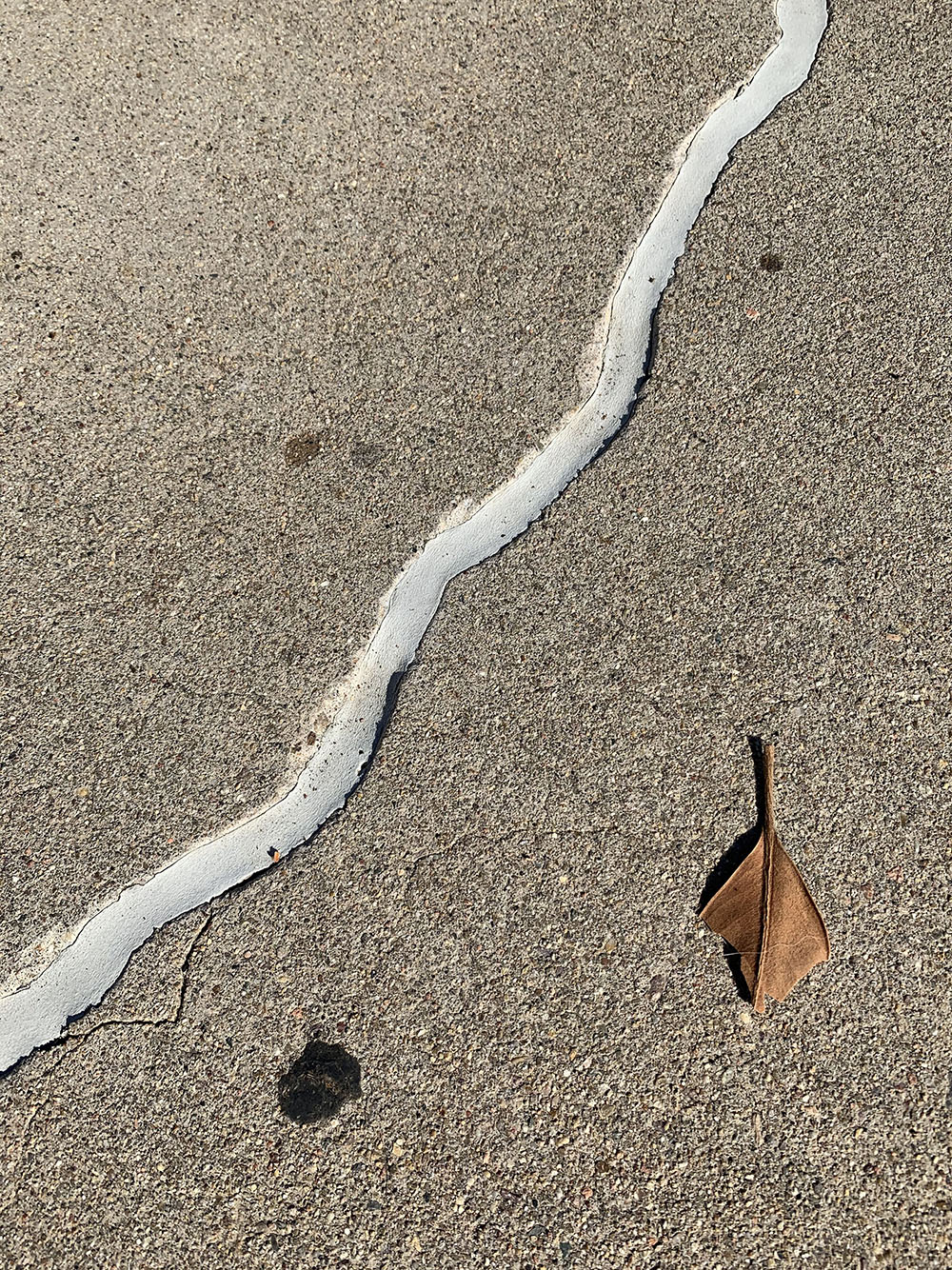 What is this filler that is used for concrete cracks?-img_5342.jpg