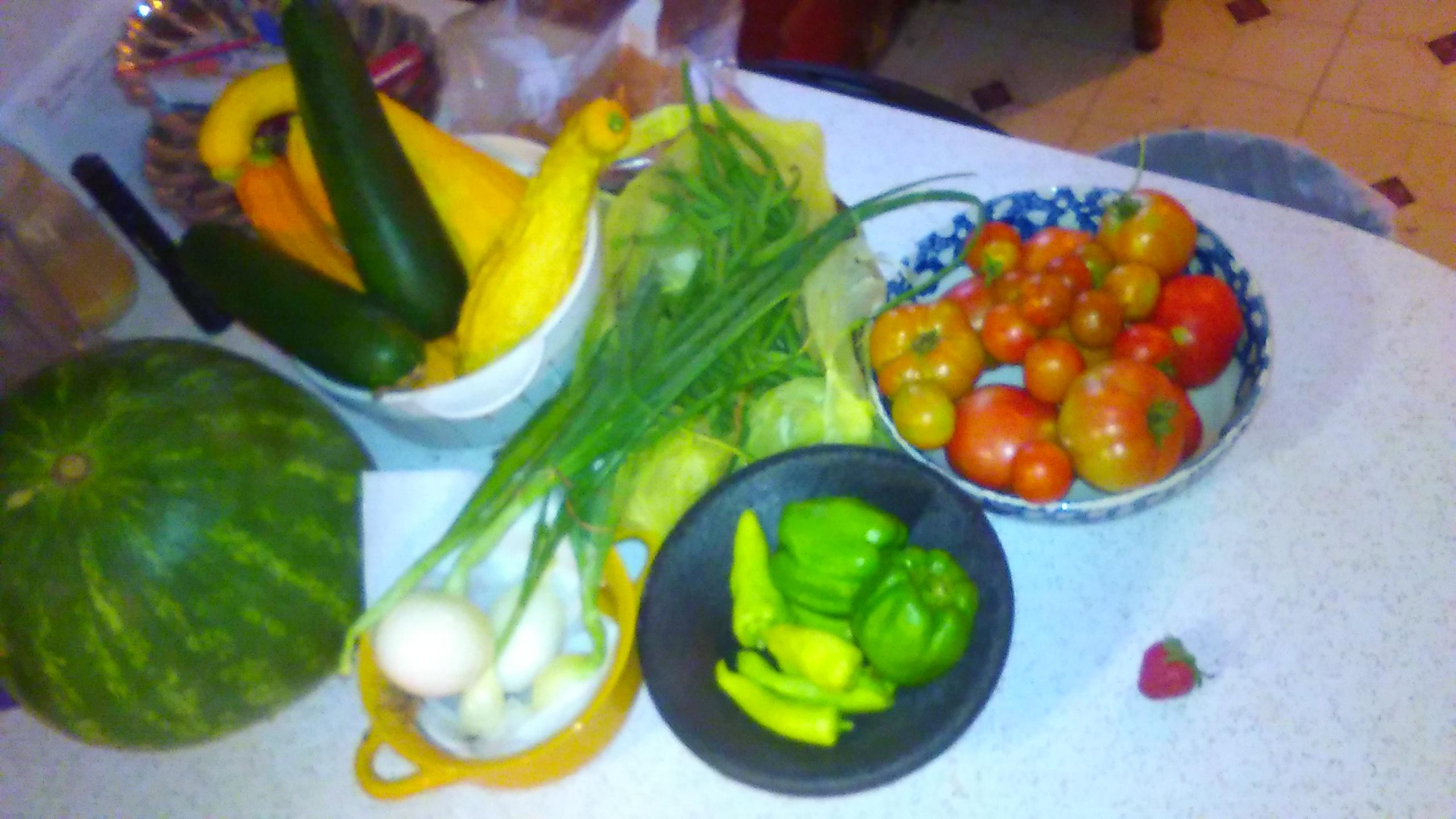 2017 vegetable garden-kimg0965.jpg