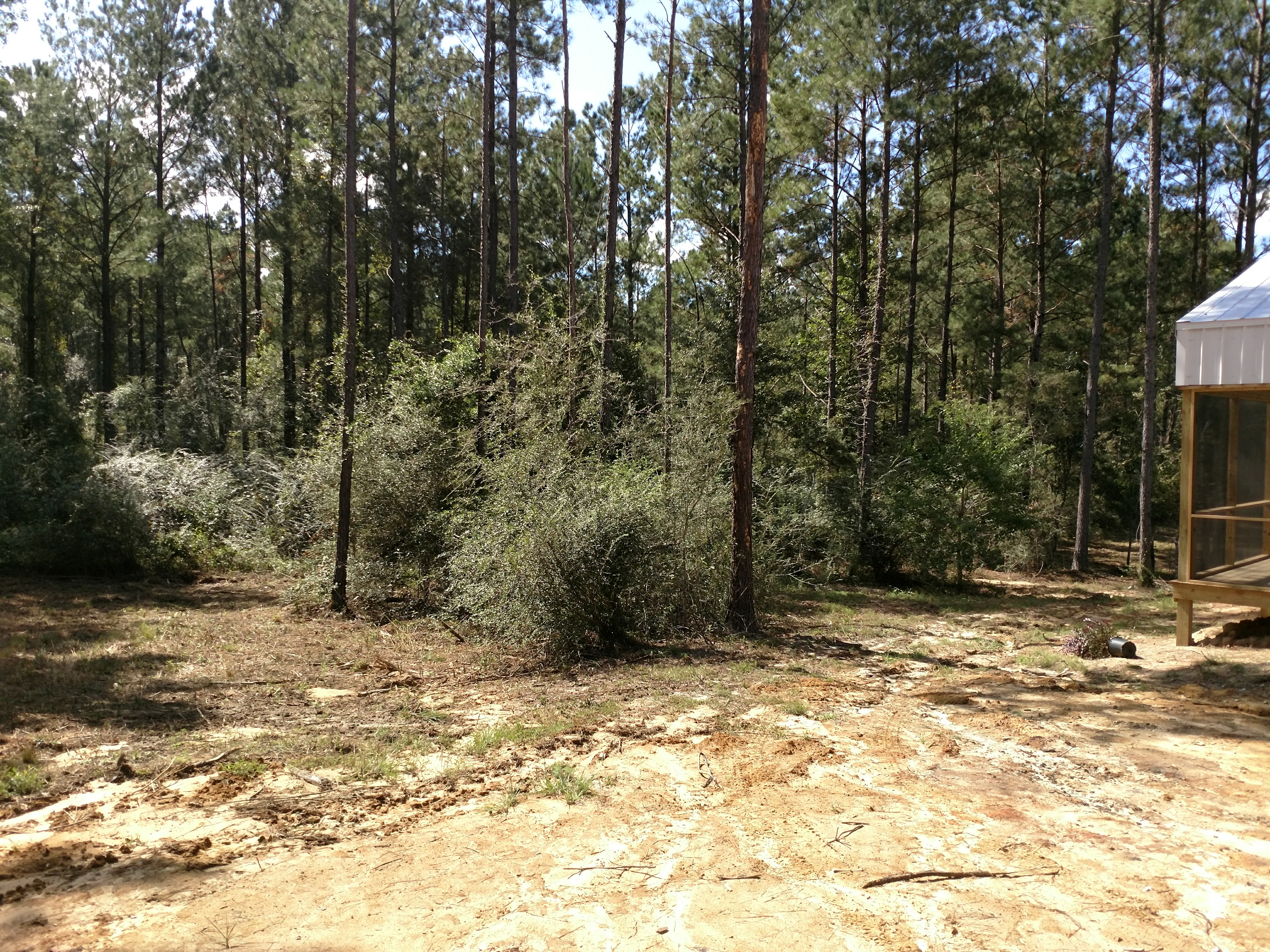 Forestry Mulching Before And After Excavation Amp Site