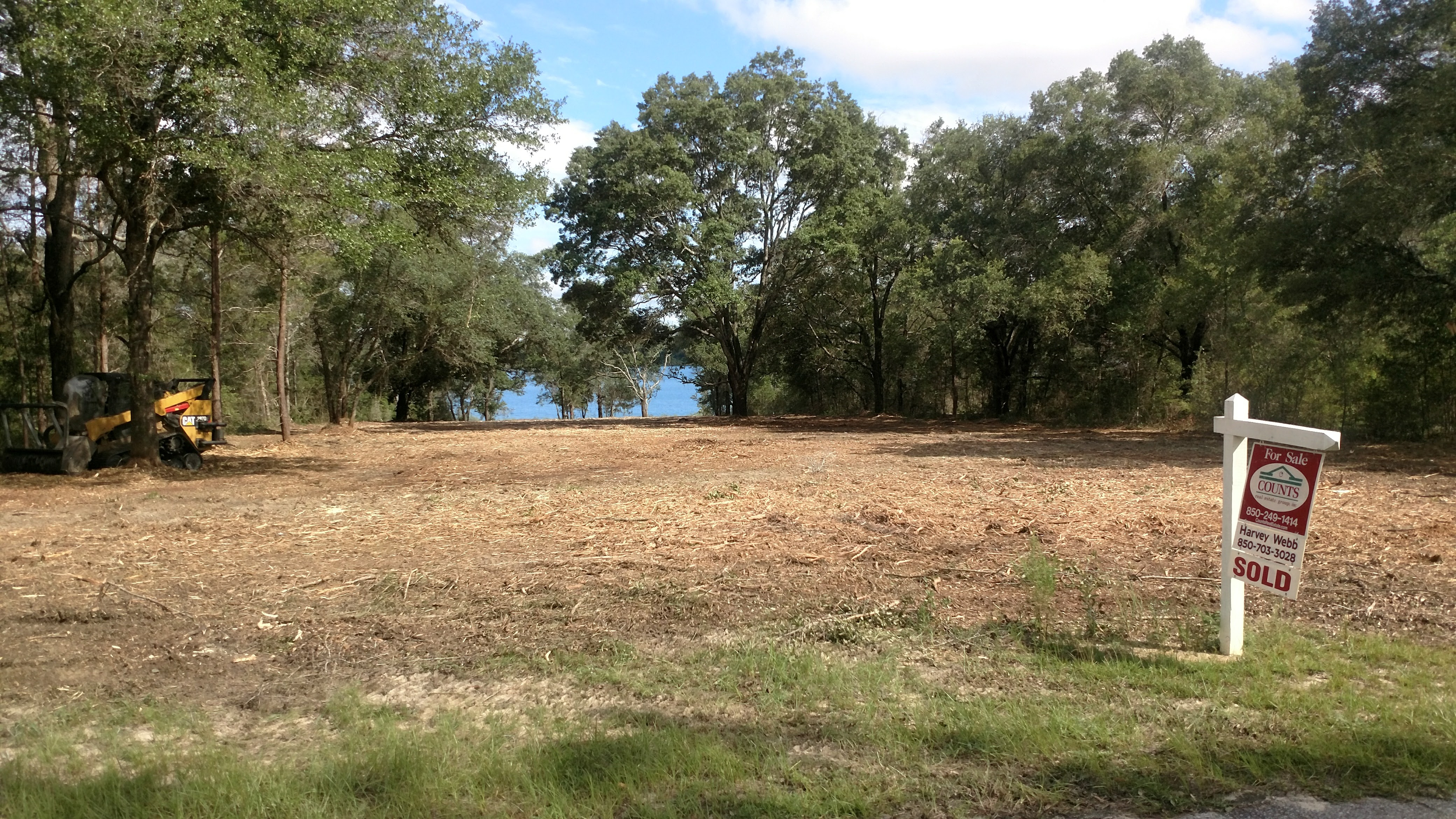 Forestry Mulching Before and After-land-clearing-niceville.jpg