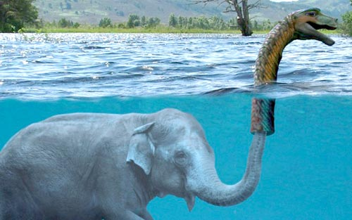 Post A Picture Of Your Current Job -- Part II-loch-ness-monster-elephant.jpg