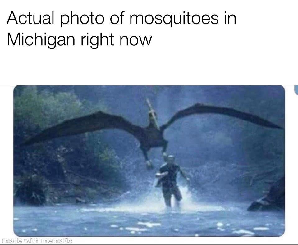 Random Pictures for Fun.-michigan-mosquitos.jpg