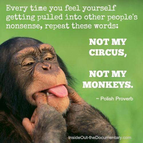 Totally Random Thoughts...-monkeys.jpg