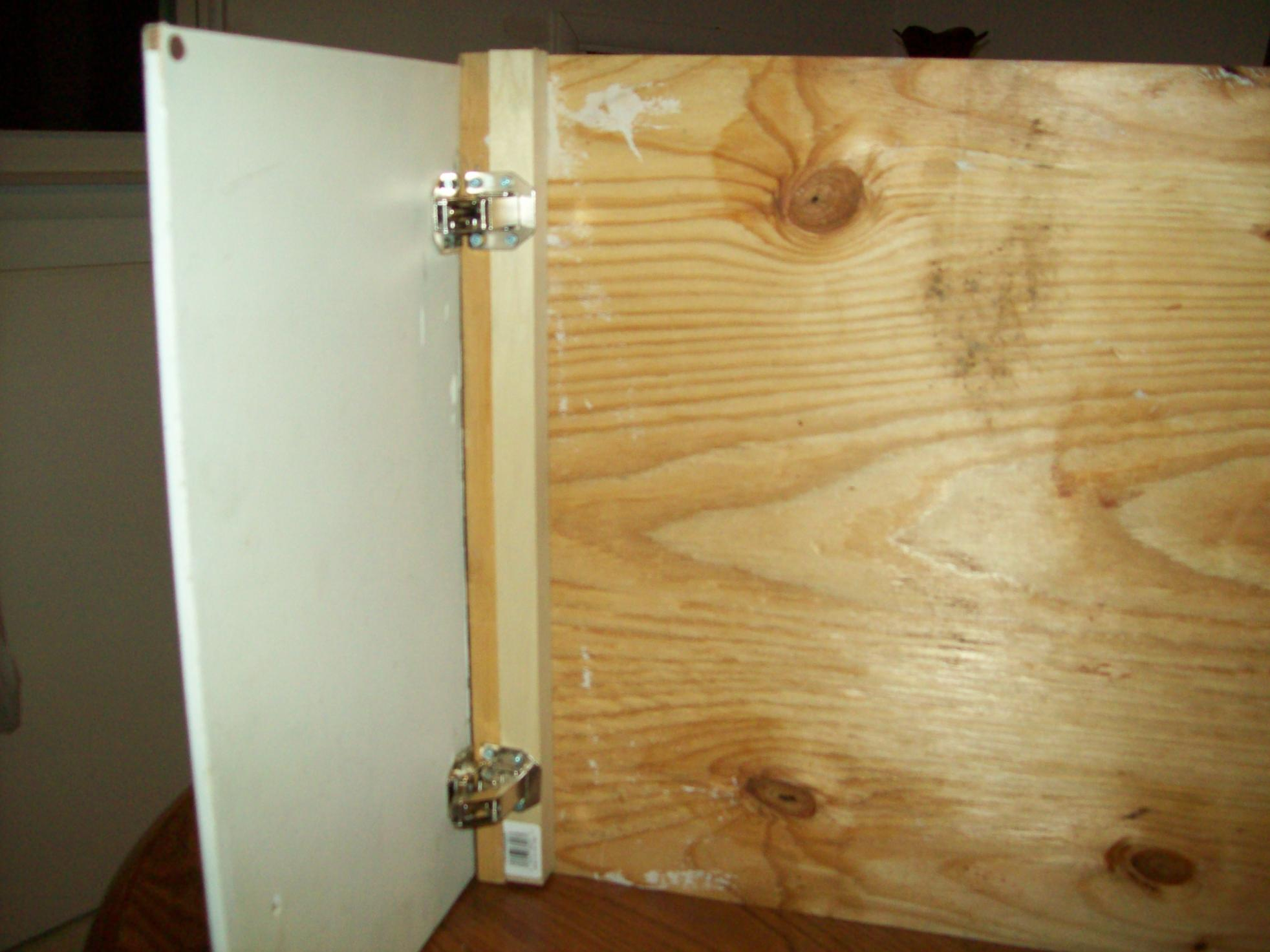 "Help! No-Bore Concealed hinge on Face frame, overlay cabinet with 1/2"" thick doors!-new-pictures-jan-8-10-073.jpg"