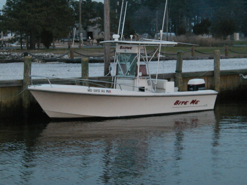 Boat guys??-p1010063.jpg
