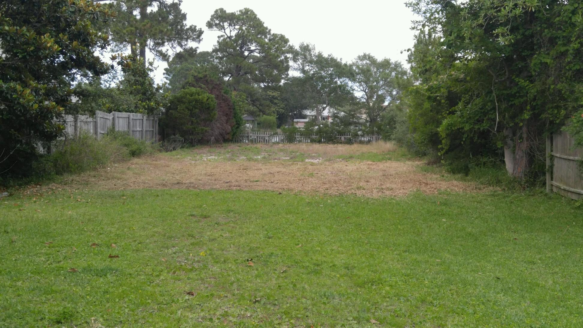 Forestry Mulching Before and After-panama-city-beach-brush-clearing-after-grand-lagoon.jpg