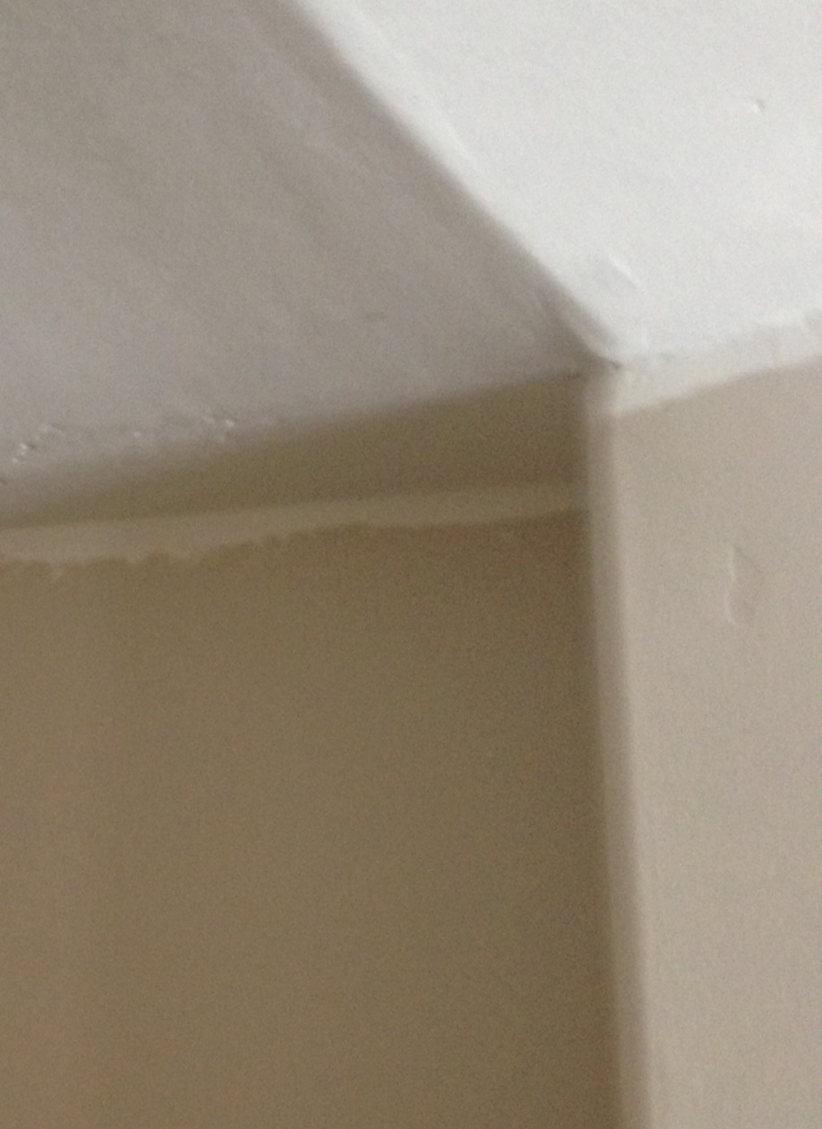 Crown molding for vaulted ceilings - Bullnose On Vaulted Ceiling Crown