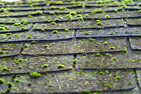Tesla Solar Roof And Energy Business Narrative Continues To Fall Apart-removing-moss-roofs.jpg