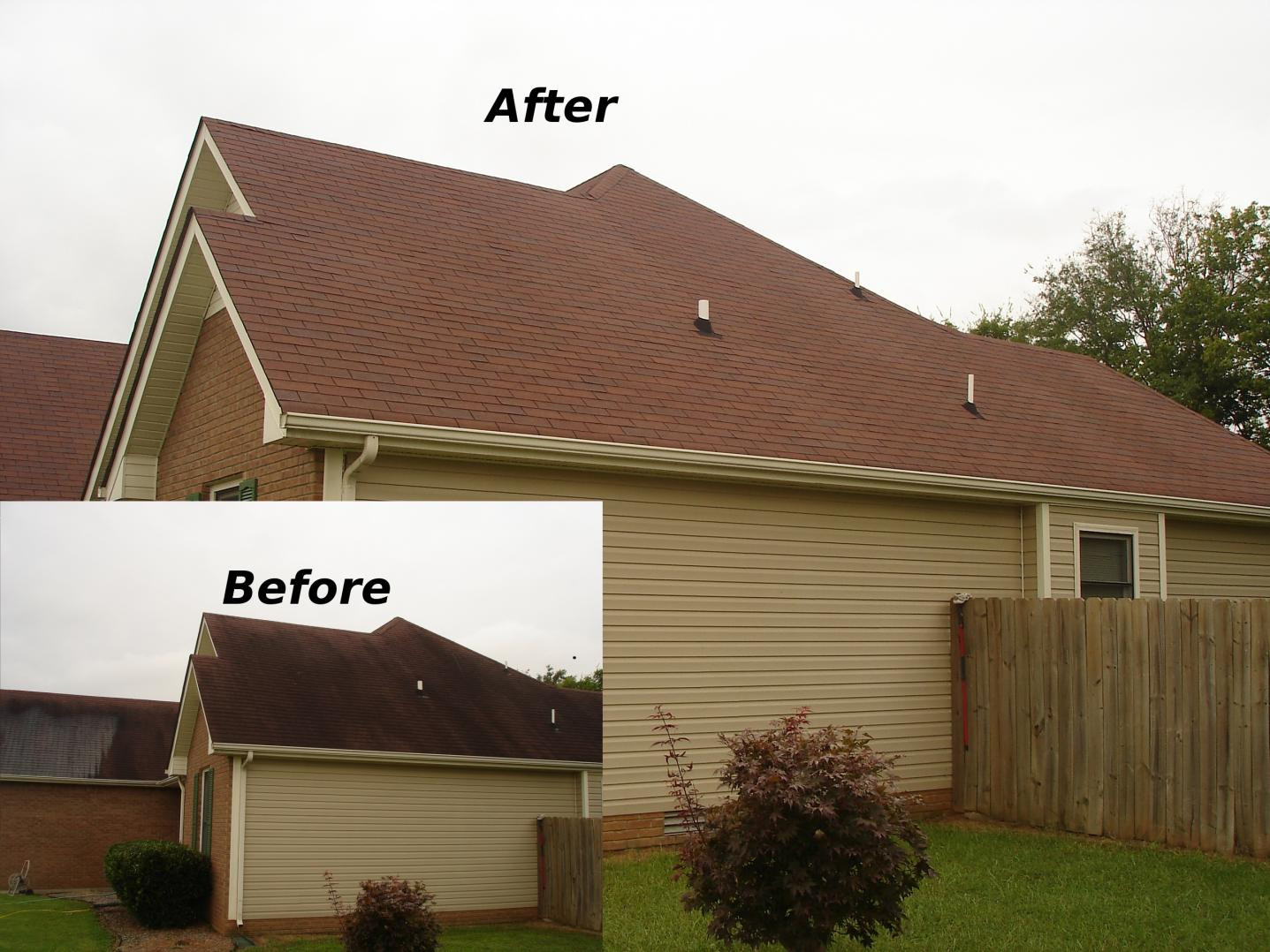 Pressure Washing and much more-roof-cleaning.jpg