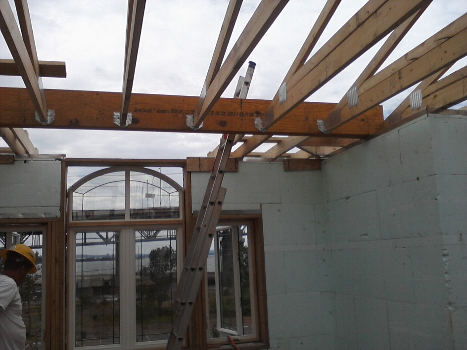 Post A Picture Of Your Current Job -- Part II-roof-framing-july-25-16-.jpg