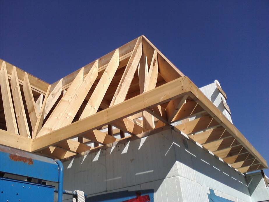 Post A Picture Of Your Current Job -- Part II-roof-framing-july-25-6-.jpg
