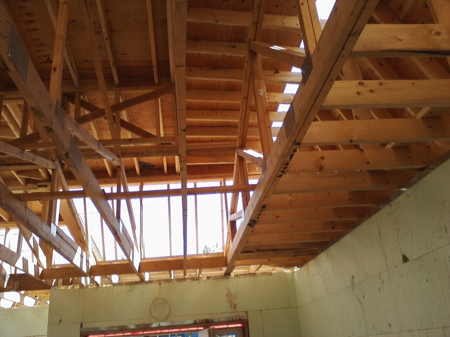 Post A Picture Of Your Current Job -- Part II-roof-framing-july-25-8-.jpg