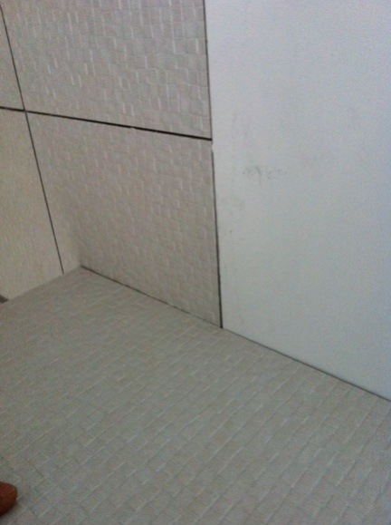 Ditra Amp Schluter Metal Edge Tiling Contractor Talk