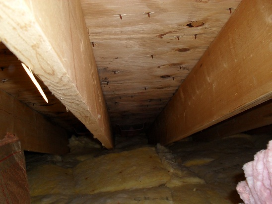 Plywood Buckle Roofing Contractor Talk