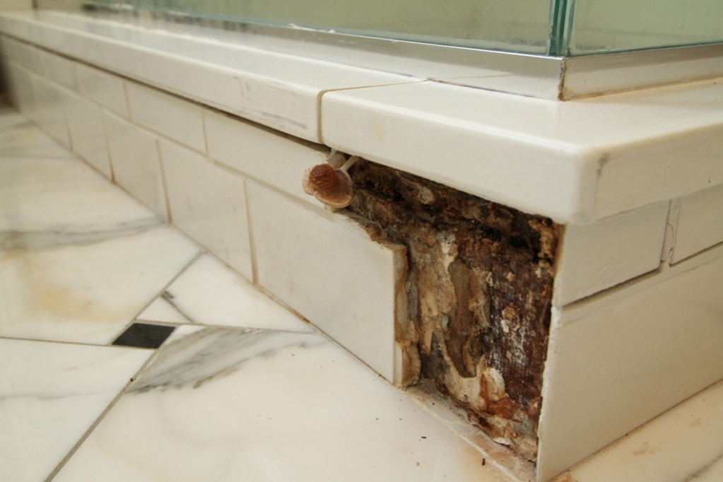 Tile Installation Failures In A High End Remodel - Page 4 - Tiling ...