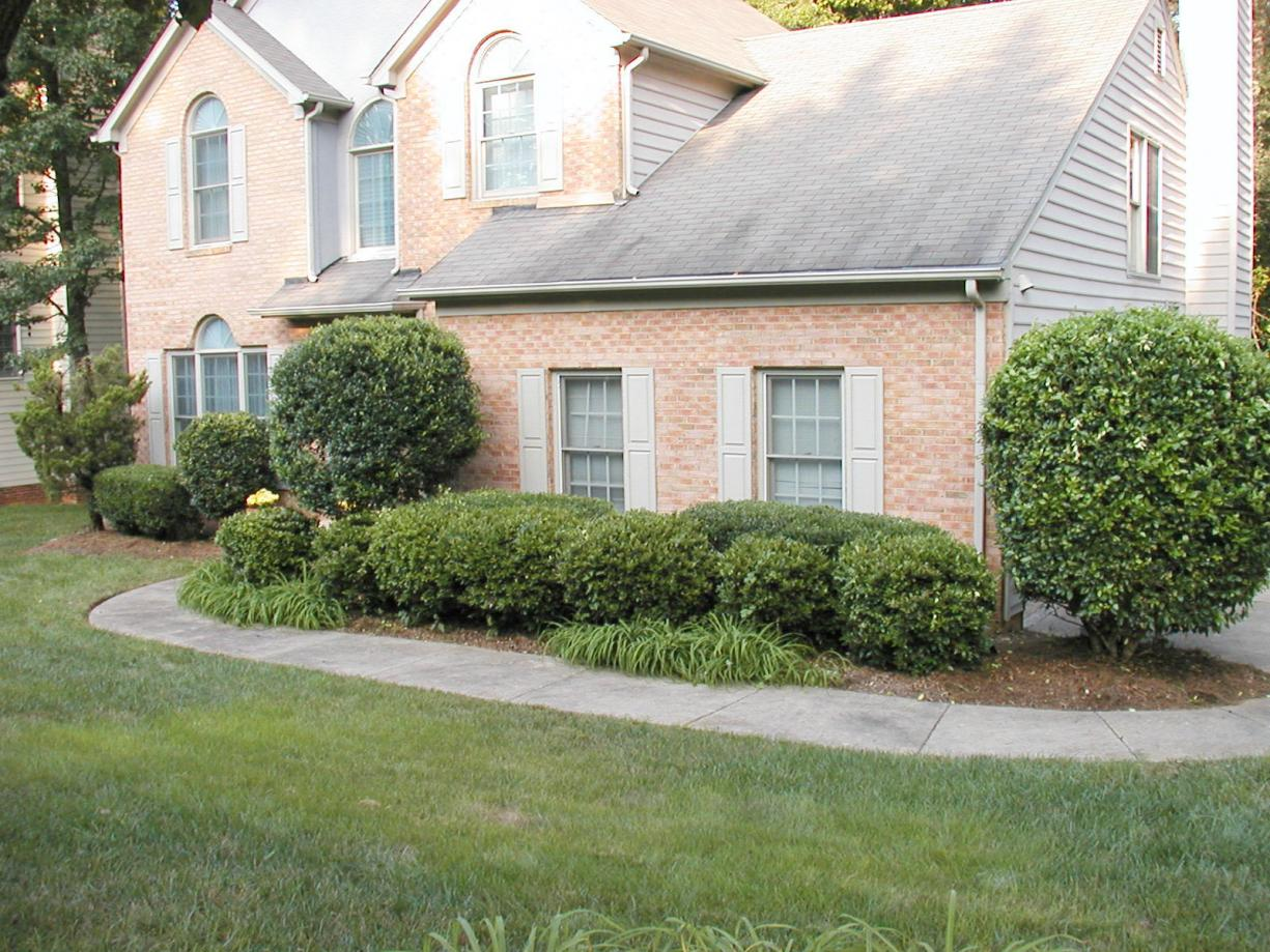 Bushes In Landscaping Small Backyard Landscaping Ideas Decor