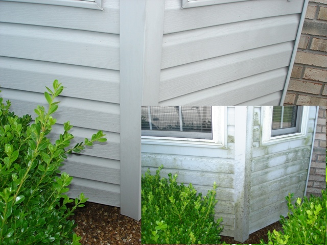 Pressure Washing and much more-siding-combined.jpg