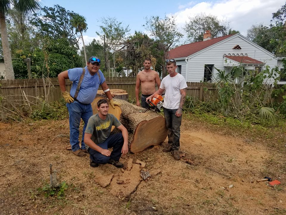 New! Member pictures thread,-stump-grinding-near-deltona-deland-new-sryma-beach.jpg