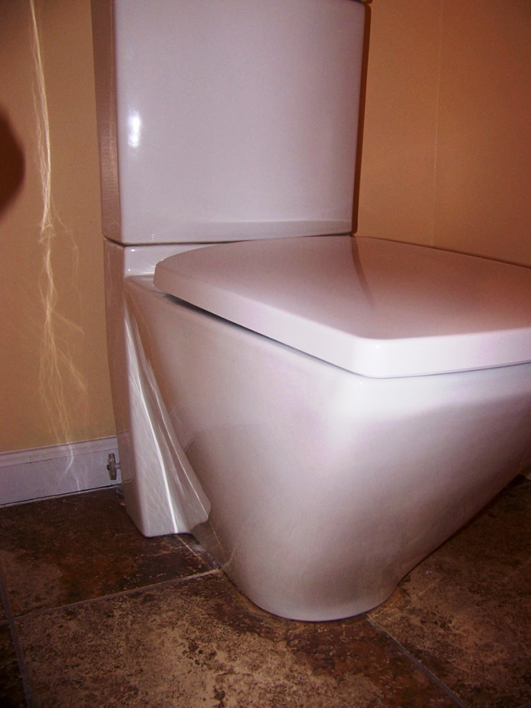 Best Toilet on the Market-toilet-002.jpg