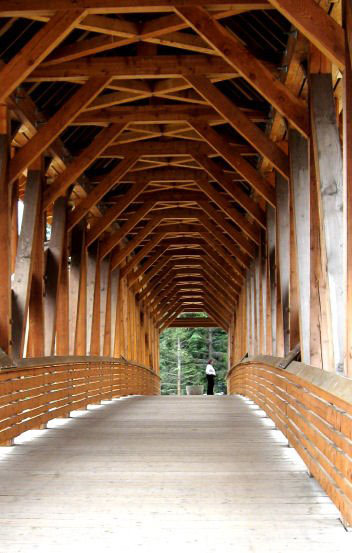 Stick Roofs Vs Trusses Page 2 Framing Contractor Talk