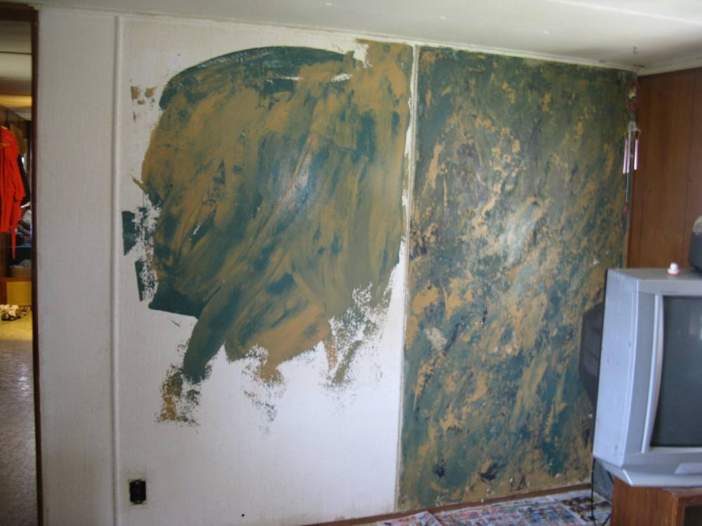 Venetian plaster room images for Red top gypsum plaster