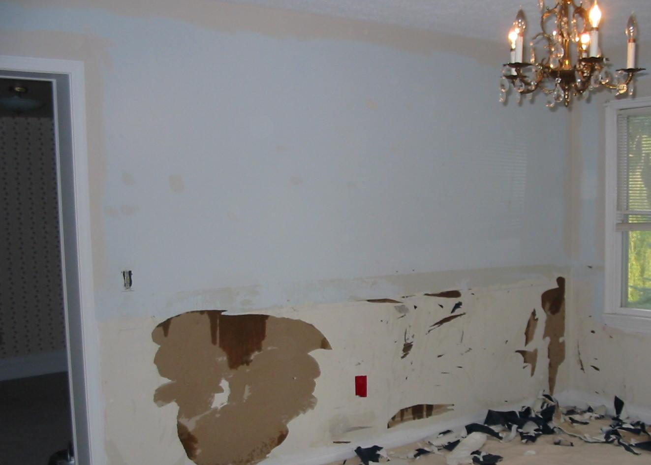 Wallpaper removal - Contractor Talk - Professional Construction and