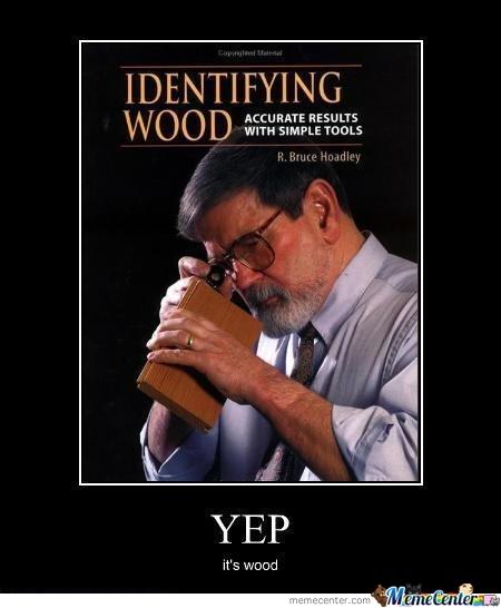 species identification help-yep-its-wood.jpg