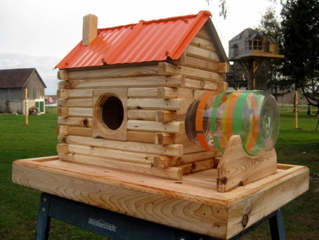 i build lots of birdhouses so i thought why not squirrel feeders and dog houses these projects are all made from white cedar - Extreme Houses