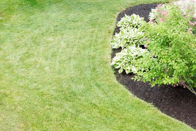 aerating your lawn and picking the sproper mix is what we do at Troy Ohio